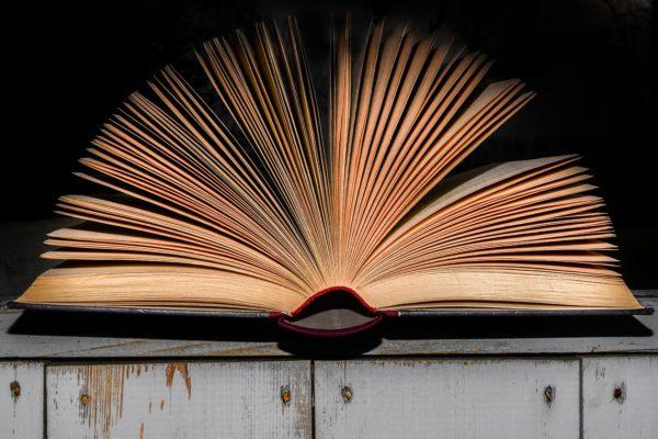 Il paradosso dell'ignoranza: chi meno sa più crede di sapere
